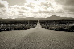 Roads_67