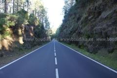 Roads_83
