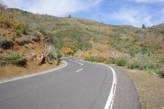 Roads_89