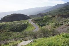 Roads_92