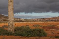 Landscape_221