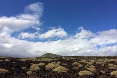 Landscape_287